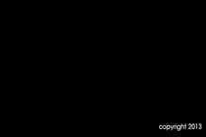 AMA-TV: Google, Augmented Reality, Business Cards and Body Language