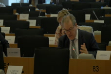 Working as a Member of the European Parliament