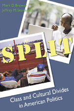 Split: Class and Cultural Divides in American Politics