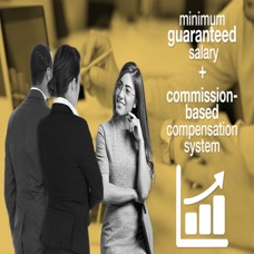 What Would You Do: Commission Sales Issue