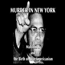 Malcolm X And The Birth Of Afro-Americanism