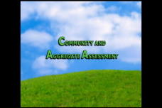 Community and Aggregate Assessment