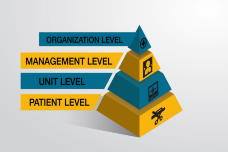 Health Literate Organizations for the Nurse Manager