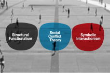 Core Concepts in Sociology: Micro- & Macro-Level Theories