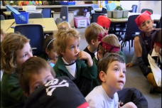 Primary (Formative Assessment and Personalised Learning)