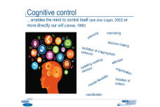 The Tale Of Amodal Cognitive Control Processes: Modality Matters